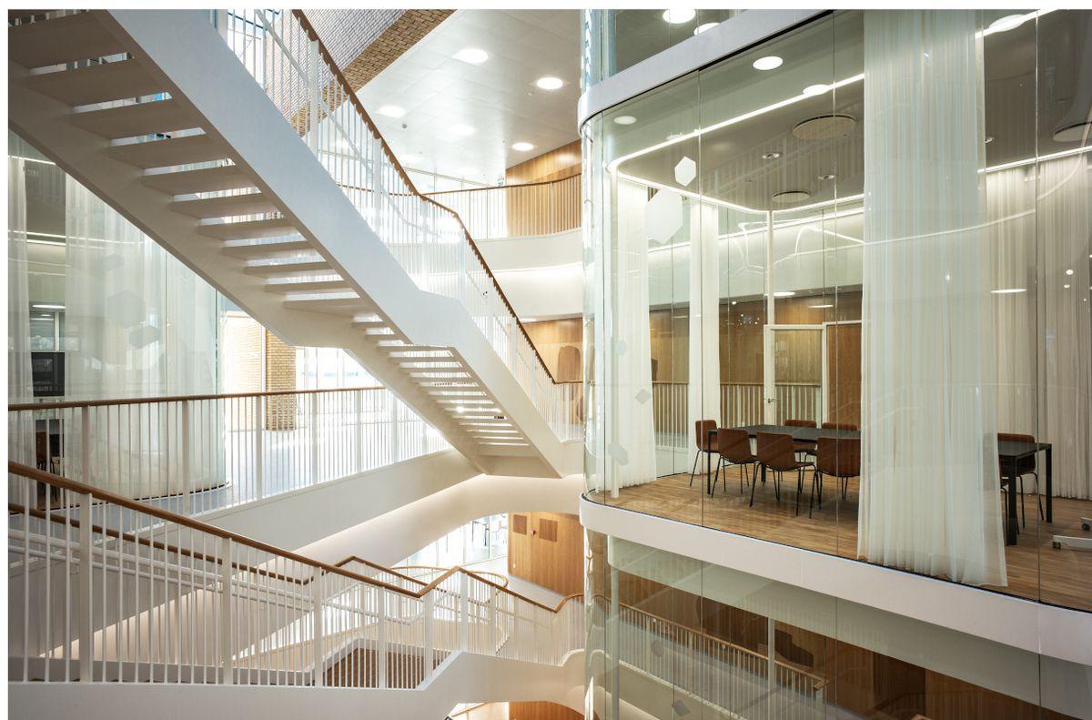 Institut for Biomedicin i Aarhus: Storhed og tyngde