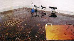 BYG-ERFA Undgå kælderoversvømmelse ved skybrud
