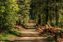 Estrup Nature: Bæredygtighed skal være for alle