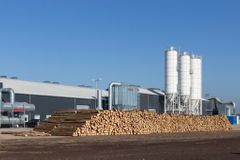 Miljøminister vil reducere nåletræsplantager: Forening råber vagt i gevær