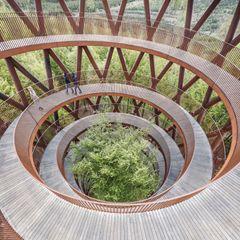 Arkitektur med bæredygtigt træ skal hædres