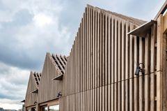 Træ i Byggeriet: Lokalplaner hæmmer bæredygtig udvikling