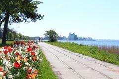 C.F. Møller Architects skal udvikle havneområde i Nykøbing Falster