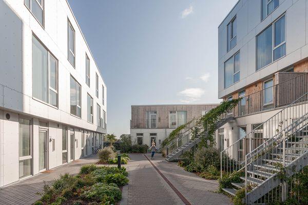 Sangberg og Træ i Byggeriet: Man kan jo bygge alt i træ