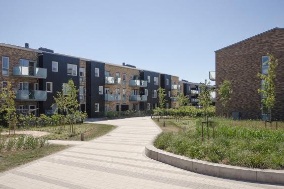 Grønnegården præmieret til årets arkitektur dag