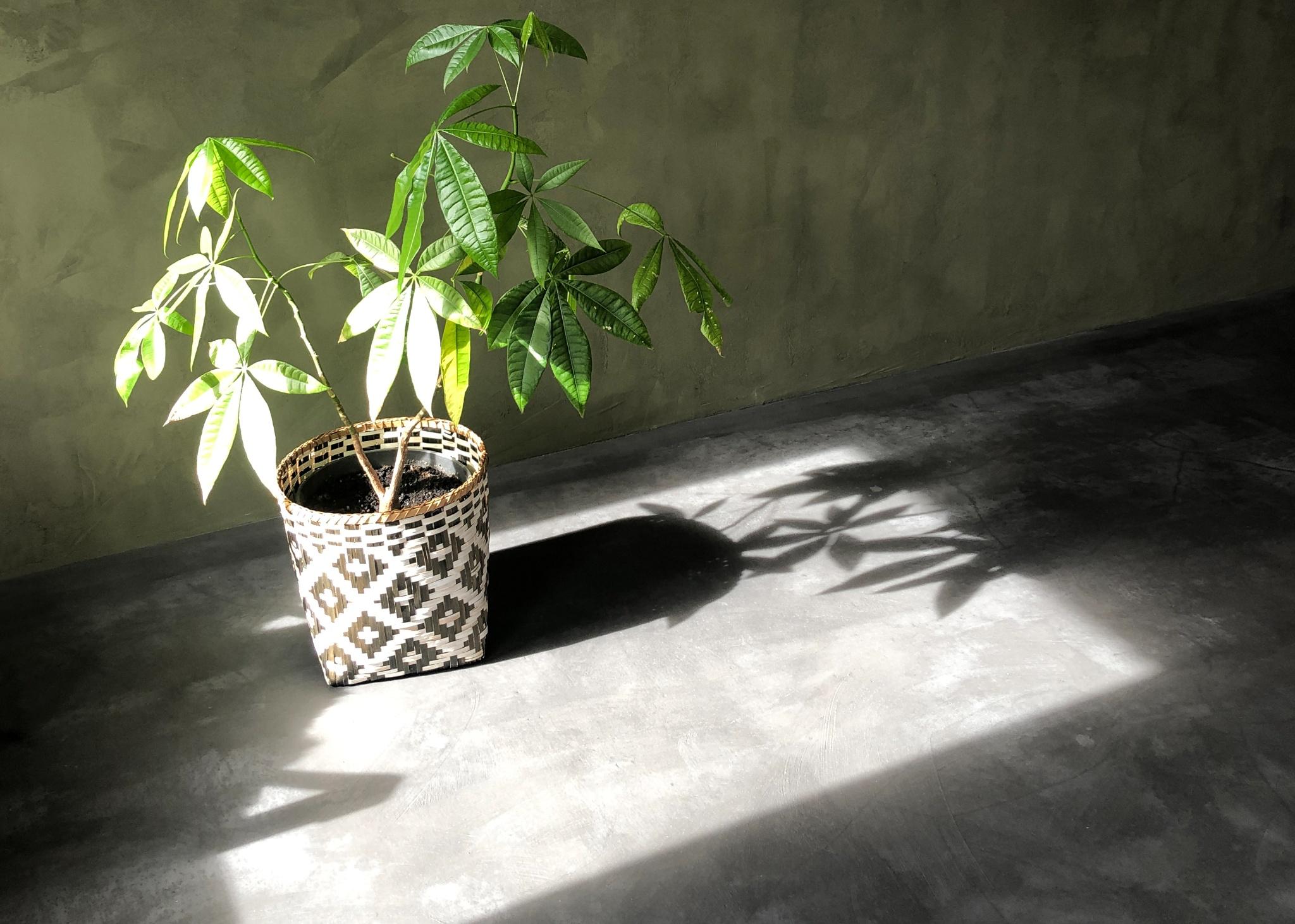 Moderne indretning med beton fra Contec