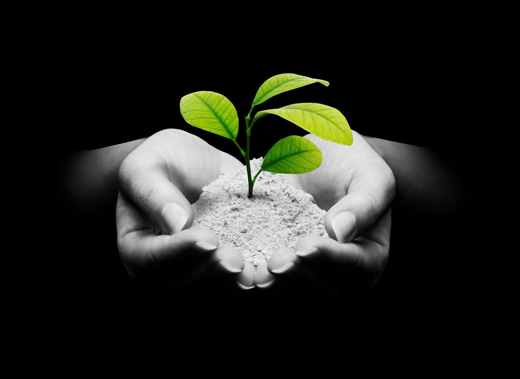 Et revolutionerende bæredygtigt alternativ til traditionel cement